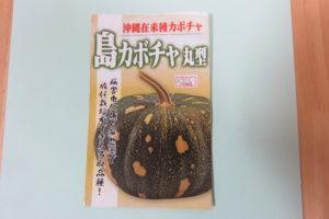 島カボチャ 種子袋